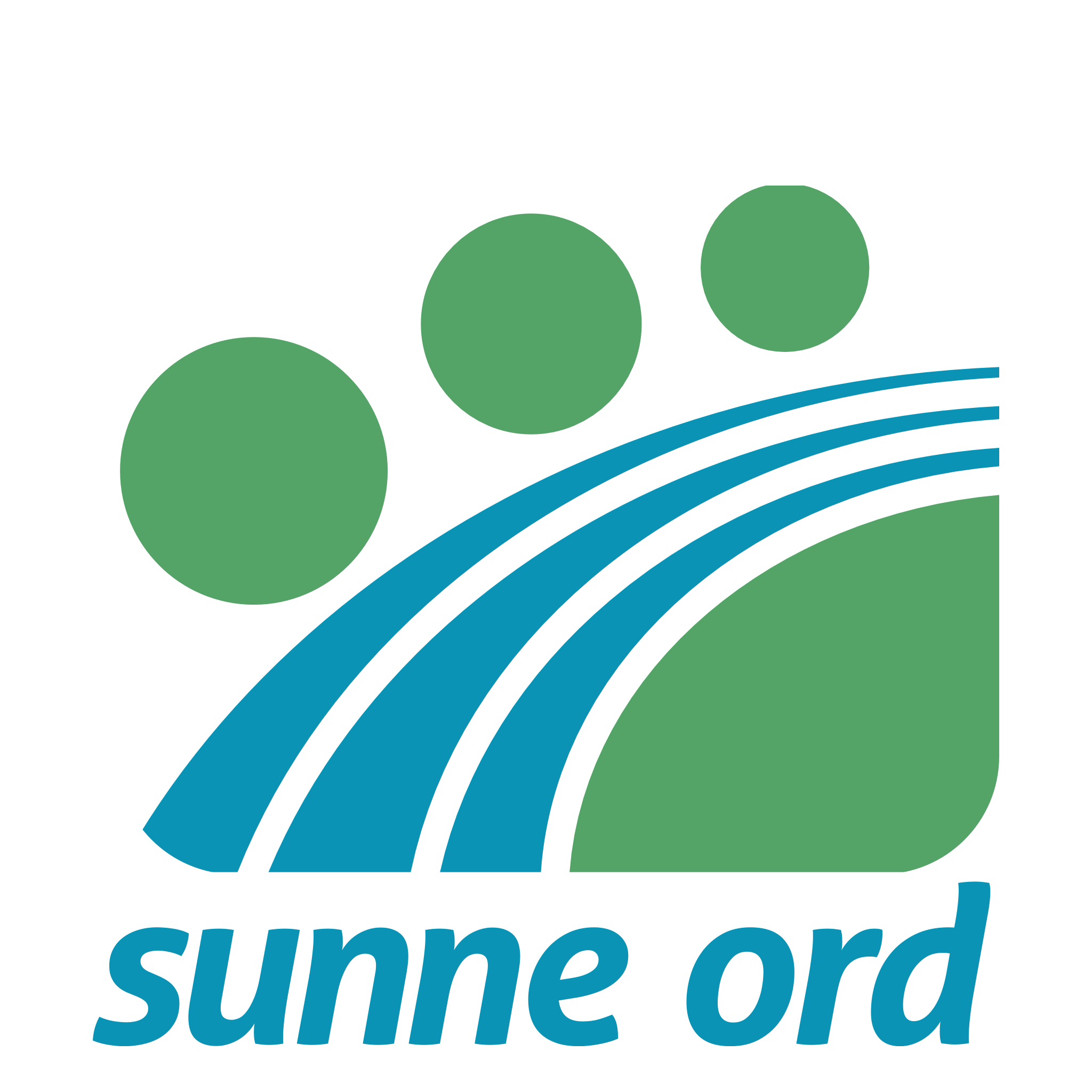 Sunne ord: Willy Sæther